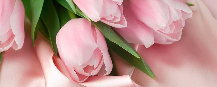 6 способів заощадити на покупці квітів до Дня Святого Валентина